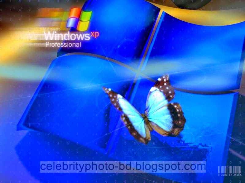 Latest%2BWindows%2BXP%2BWallpapers%2BHD%2BCollection116
