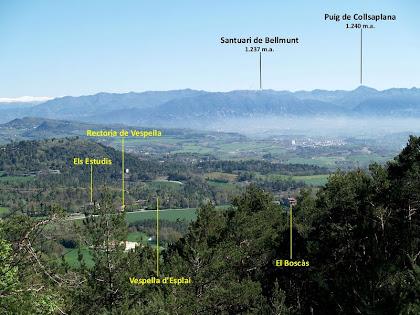El veïnat de Vespella i al fons les Serres de Bellmunt i Curull, des de la Pinassa monumental