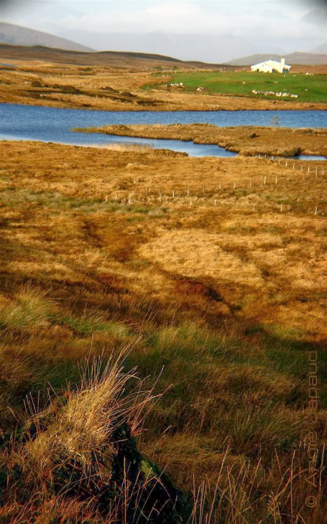 beautiful Connemara landscape with lake, mountains, house
