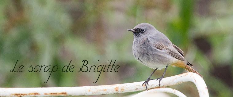 Scrap en blog de Brigitte