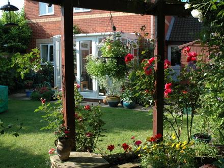 Azul vital decoraci n de jardines peque os for Jardines pequenos de casas fotos