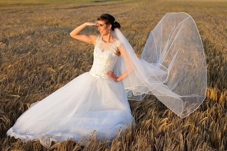 vestuvių nuotraukos rugiuose