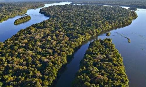 Se salva una parte de la amazonia brasilera de represas