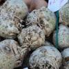 retete-mancare-telina-ciuperci