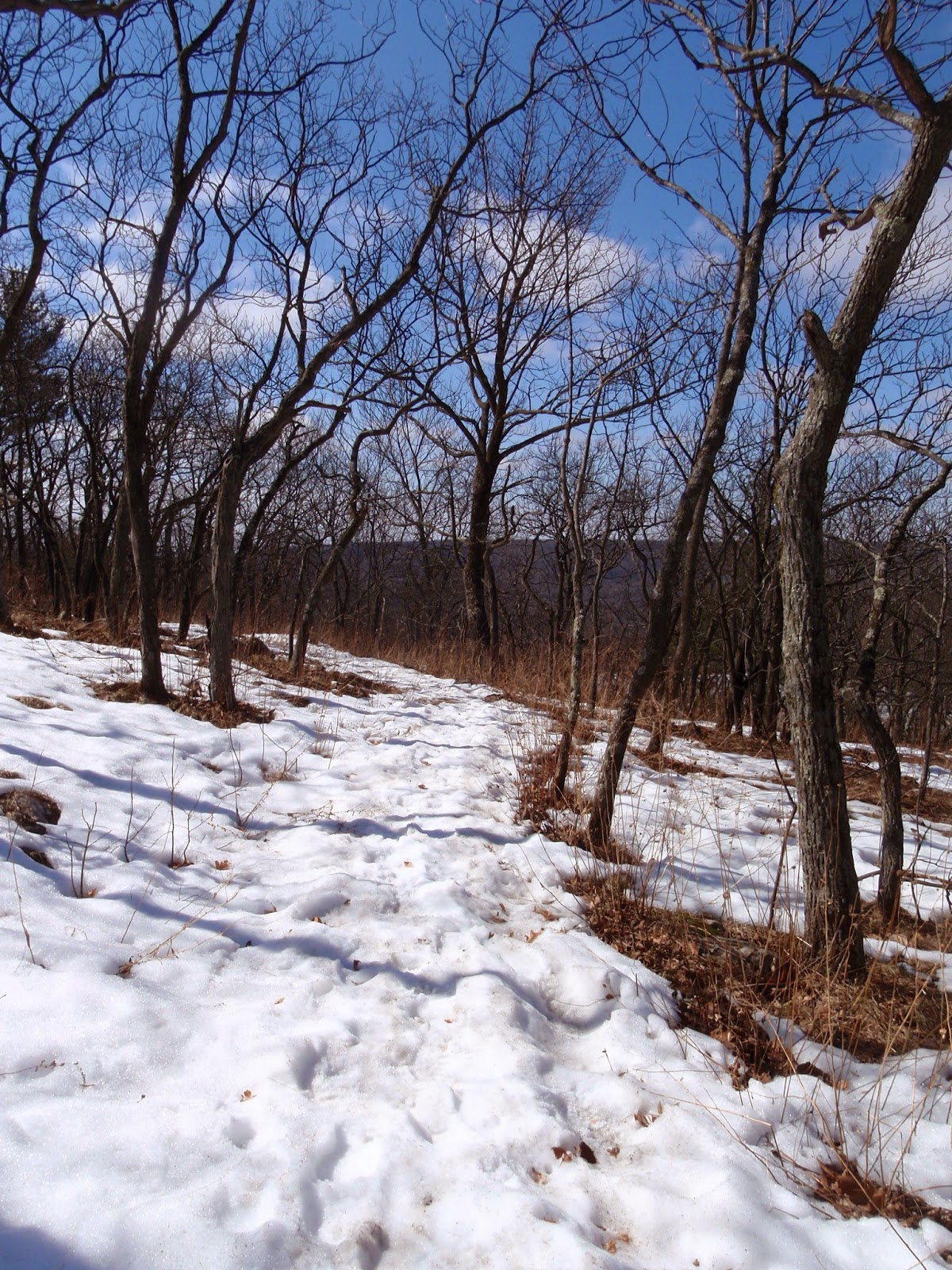Snow on the East Bluff Trail at Devil's Lake State Park
