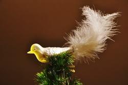 Weihnachtsvogel...