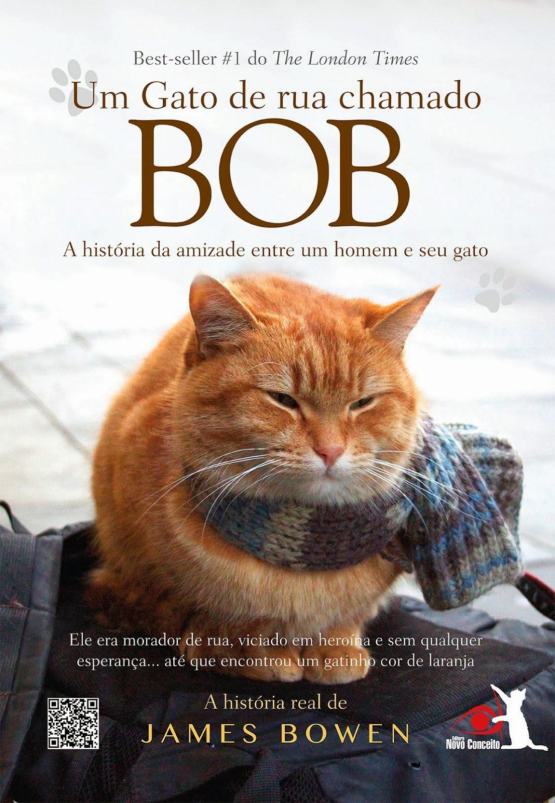 Imagens Um Gato de Rua Chamado Bob Torrent Dublado 1080p 720p 5.1 Download