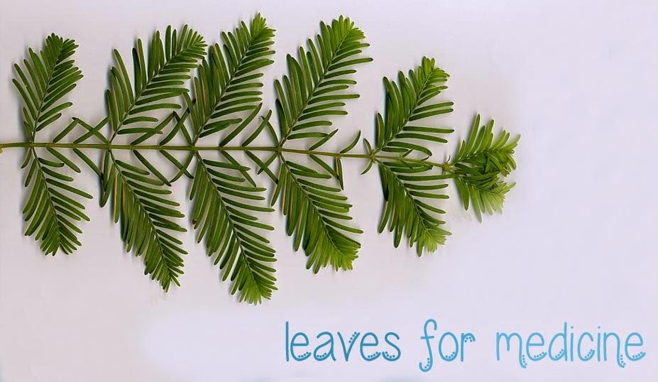 Leaves for Medicine