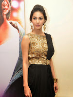 Amrya Dastur photos at Anekudu movie audio launch-cover-photo
