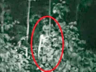 Imagens e vídeo de suposto extraterrestre vaza na web