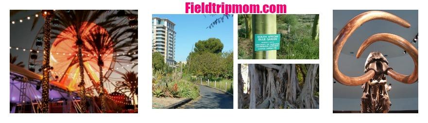 Field Trip Mom