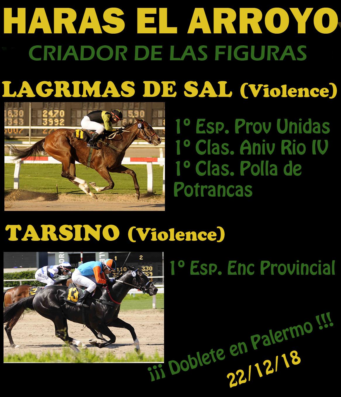 HS EL ARROYO FELIC