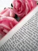 Faz da Bíblia sua leitura diária.