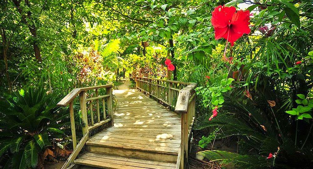 Roatan (Honduras) - Palmetto Bay Plantation 3* - Hotel da Sogno