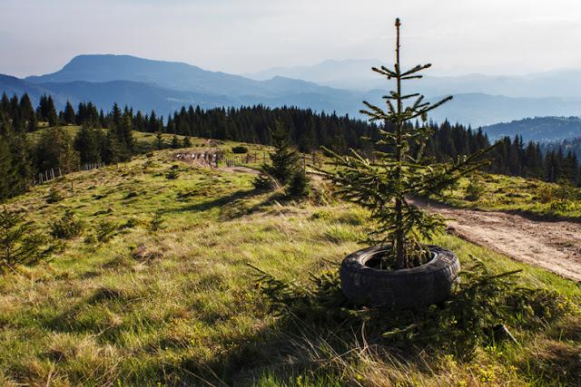 gunoi groapa dump environment distrugerea mediului pet cauciuc Transylvania Romania Maramures
