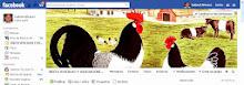 Jueces avícolas y asociaciones del mercosur