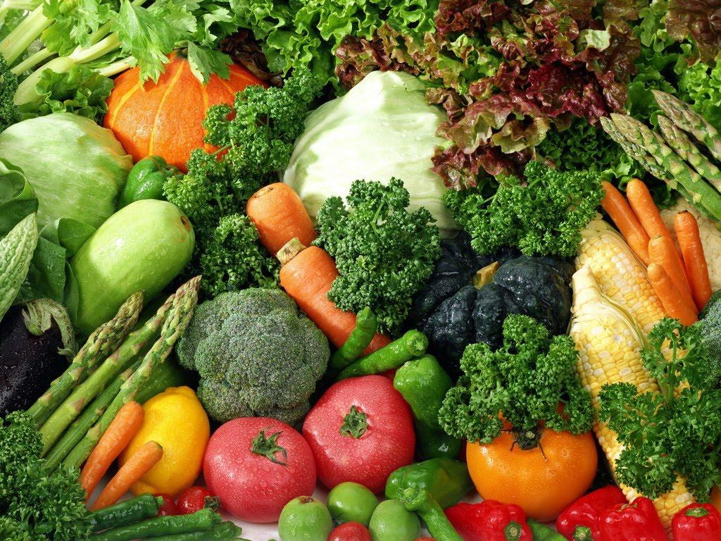 Saucir de cocina alimentos perecederos semi perecederos for Plantas hortalizas ejemplos