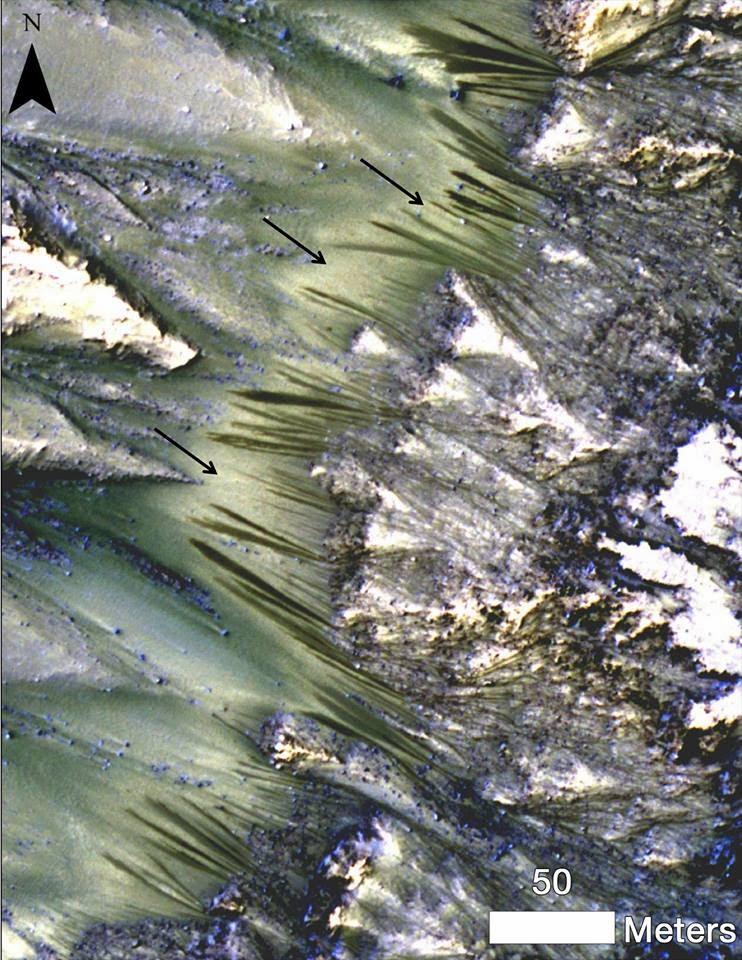 air di mars,air diplanet merah,hidup di mars,makluk mars