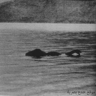 Loch-Ness-beast-optical-illusion