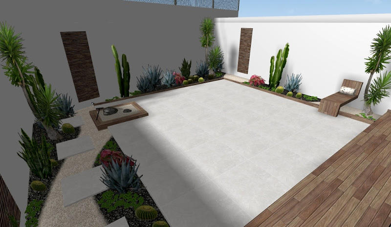 diseño de un hermoso jardin zen de cactus en patio
