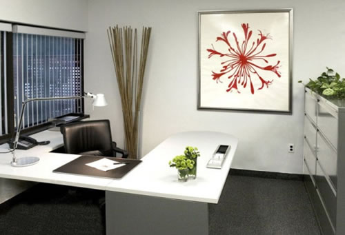 Fresh Office Design