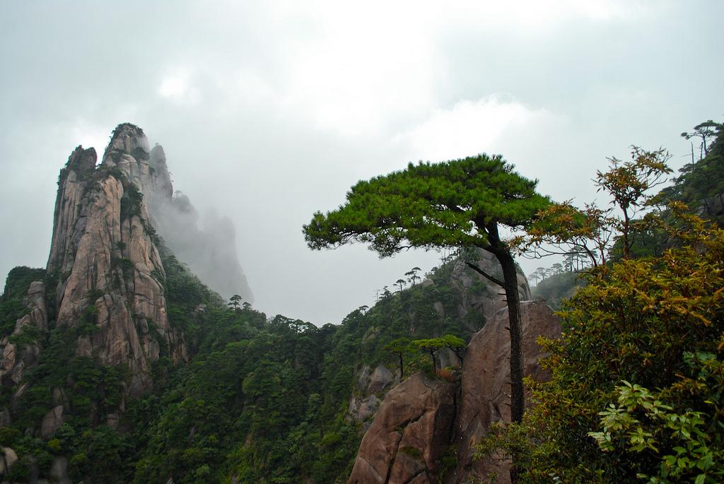 三清山の奇岩と奇松