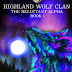 Release Promo - Highland Wolf Clan The Reluctant Alpha by A.K. Michaels