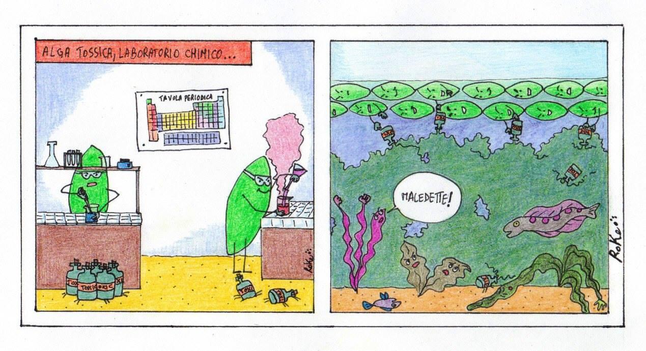 alga tossica tossine fertilizzanti eutrofizzazione vignetta