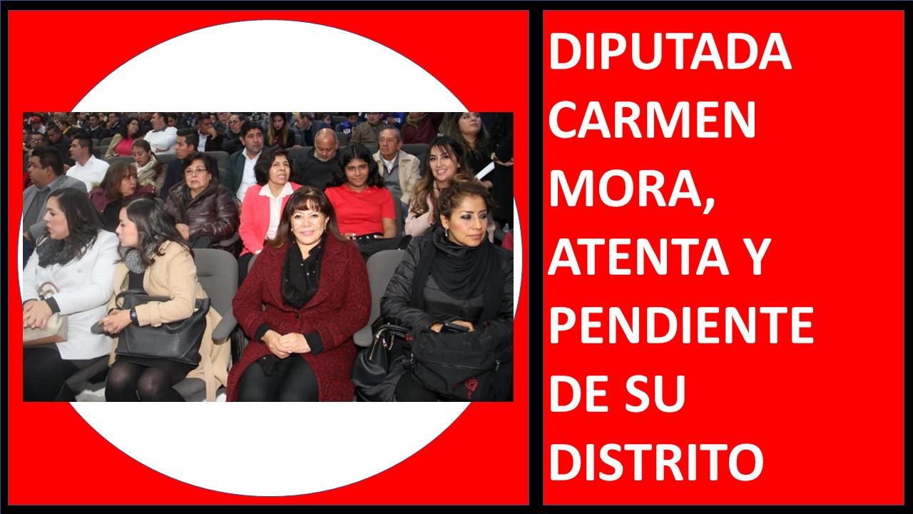 DIPUTADA CARMEN MORA