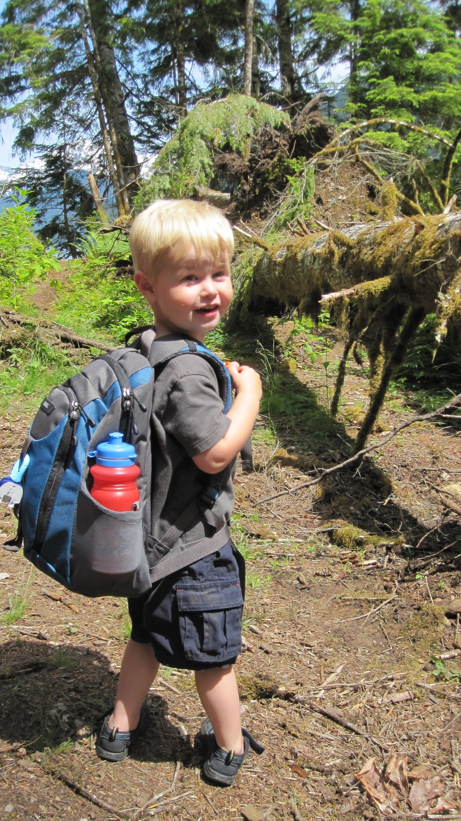 Hiking Backpack For Child - Crazy Backpacks