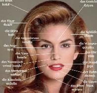 Fytyra në gjermanisht foto