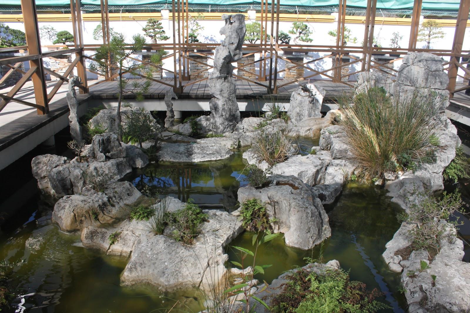 museo plantas: