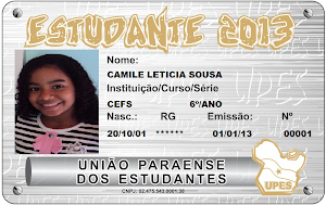 Carteira da UPES  2013