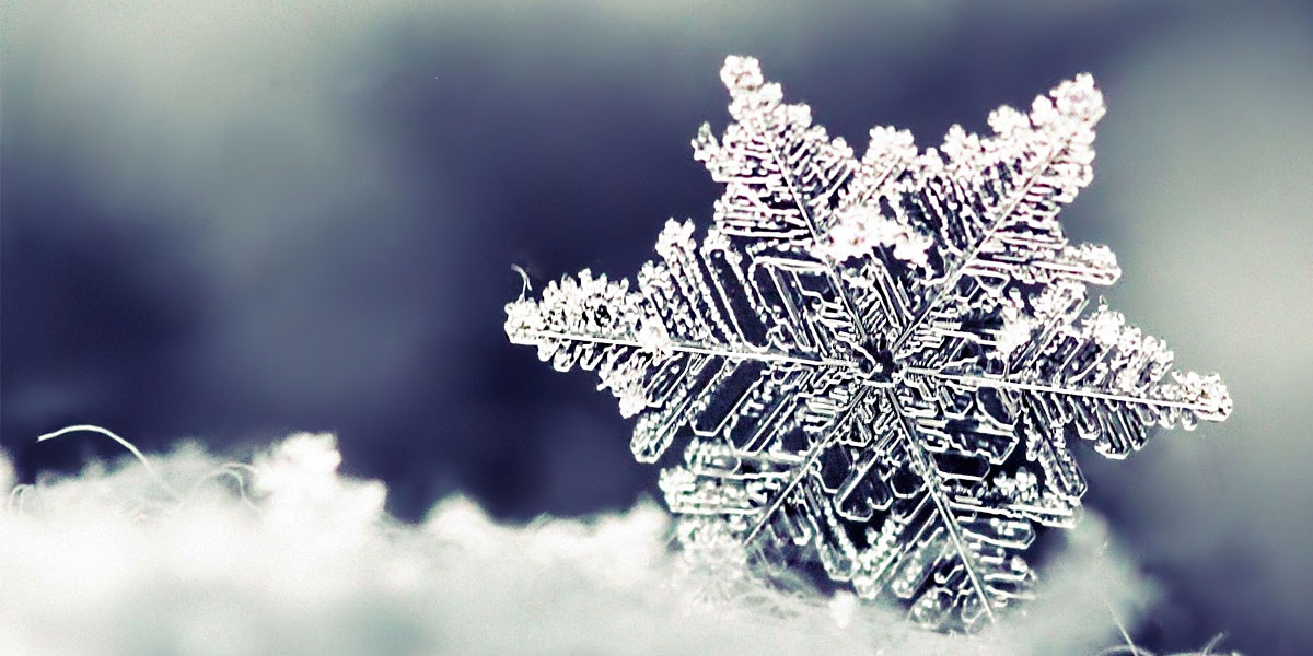 Nature Snowflakes l 300+ Muhteşem HD Twitter Kapak Fotoğrafları
