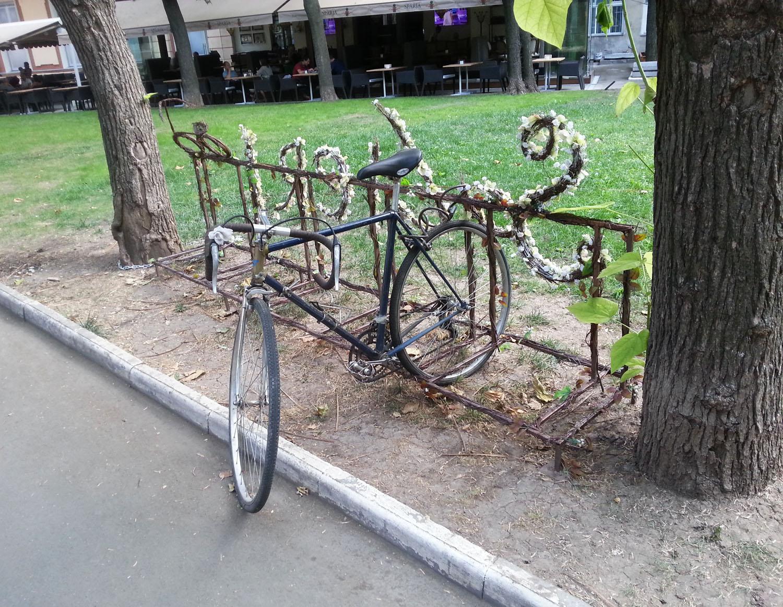 одесса+велосипед