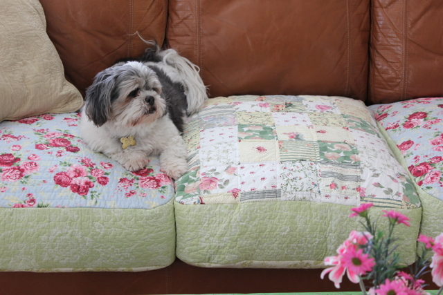 Charmant All Winter Long We Spread Cotton Quilts Over The Leather Sofa So It Is  Warmer To Sit On~
