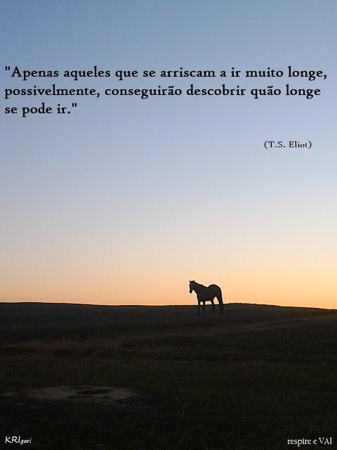 Foto particular - KRI: foto tirada em Serra da Canastra