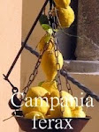 Campania Ferax