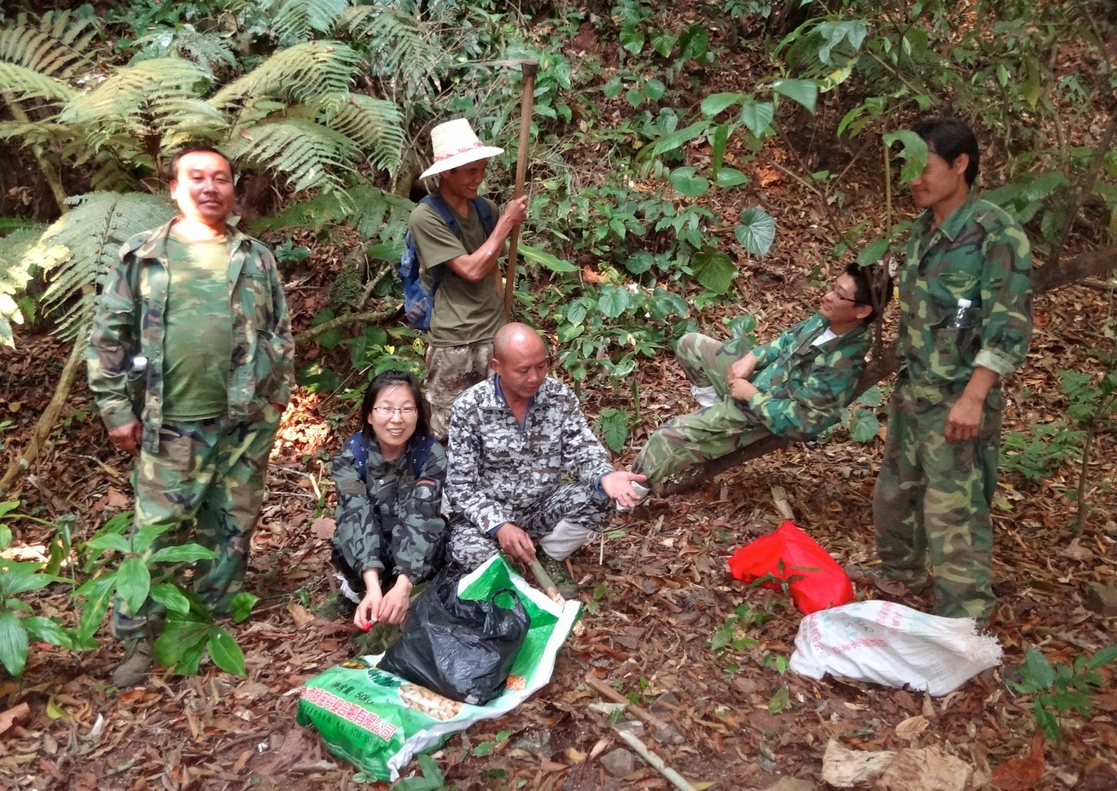 María Natalia Umaña, photo courtesy of maumana.wix.com (left), conducts fieldwork with her team in the Xishuangbanna China forest plot (right).