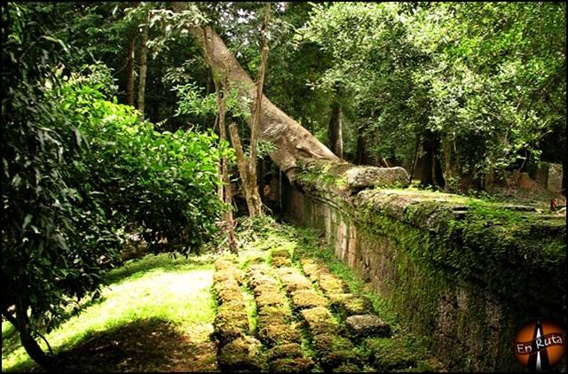 Ta-Prohm-Templos-de-Angkor_2