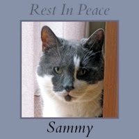 BE WELL SWEET SAMMY