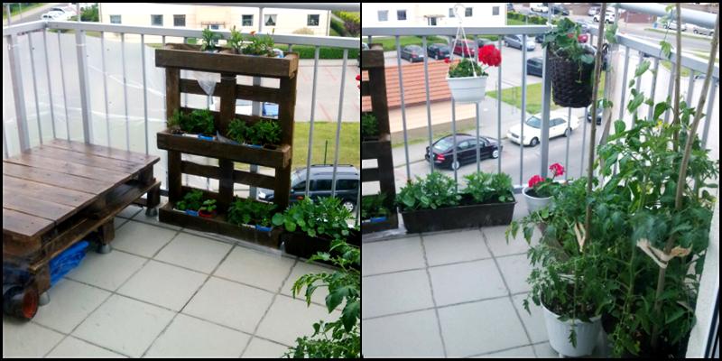 meble z palet | ogrodnictwo balkonowe