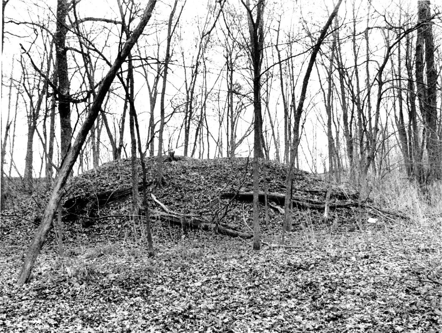 Maumee Indians http://thenephilimchronicles.blogspot.com/2011/08/early-native-american-burial-mounds-and_5472.html