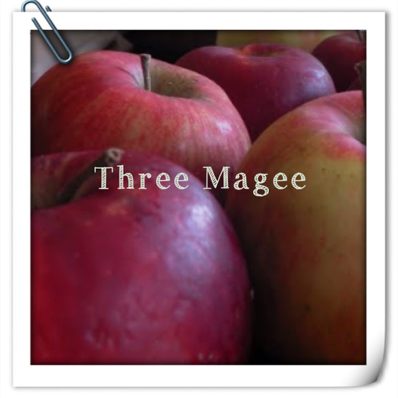 Three Magee