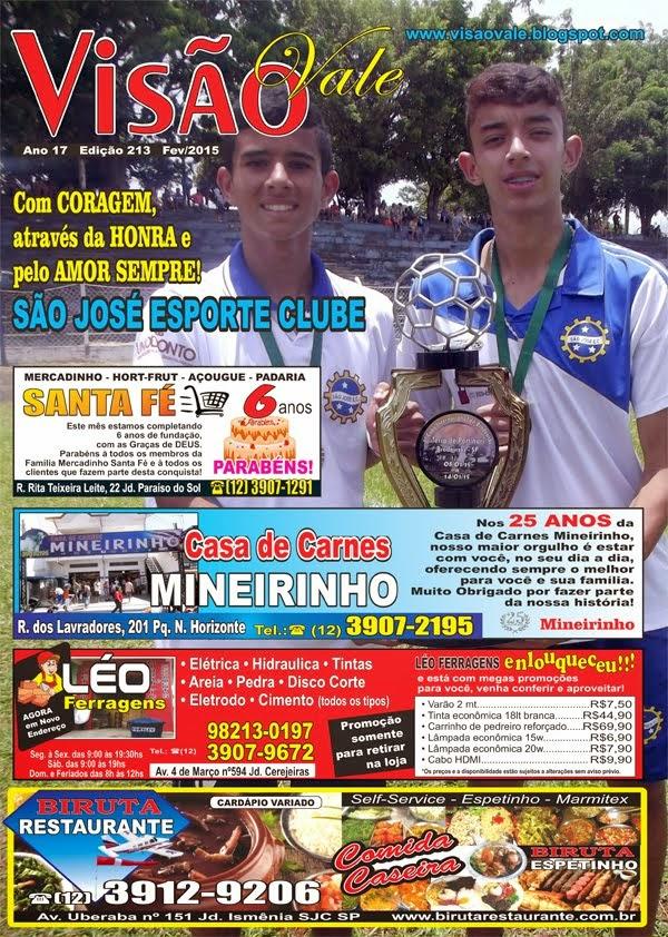 Revista Visão Vale Fev de 2015