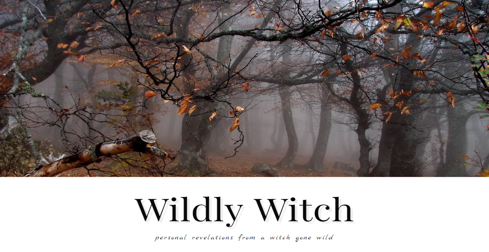 Wildly Witch