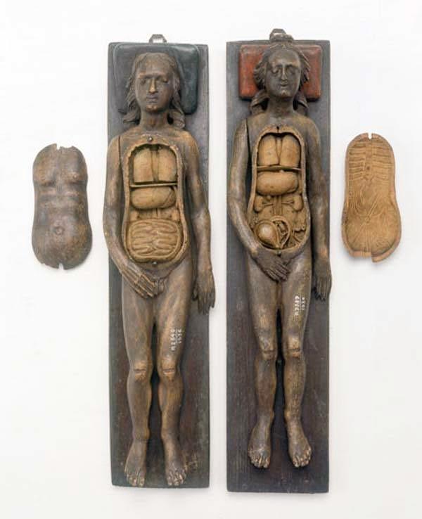 bukti-peninggalan-sejarah-paling-mengerikan-di-dunia-model-anatomi