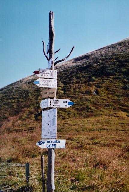 Projekt wakacyjny. Szlak na Tarnicę