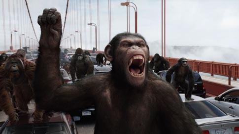 2-rise-of-the-planet-of-the-apes-movie-image-031.jpg