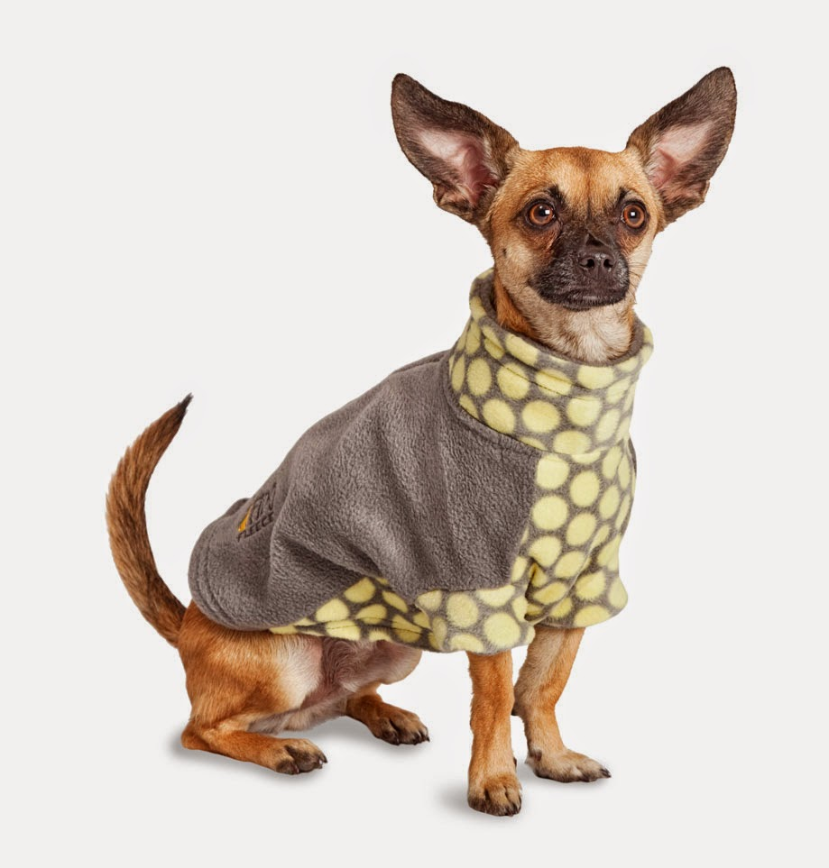 Stormy Circles Dog Coat